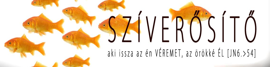 sziverosito szentseg01