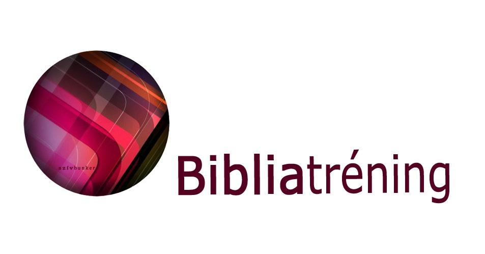 Bibliatréning